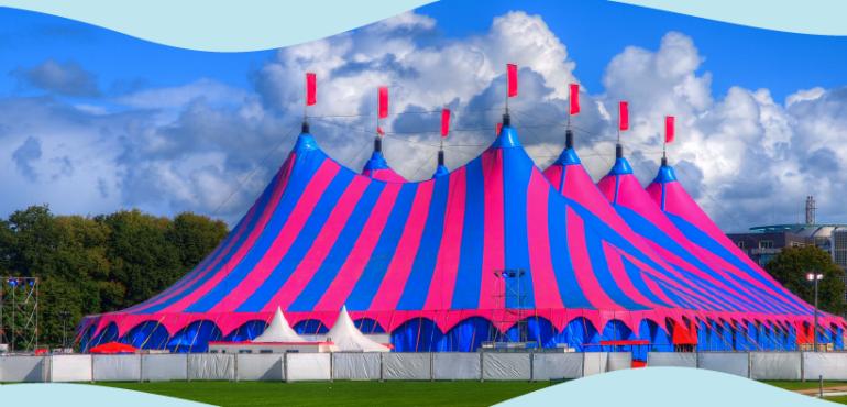 O que o Oceano Azul tem a ver com o Cirque du Soleil?